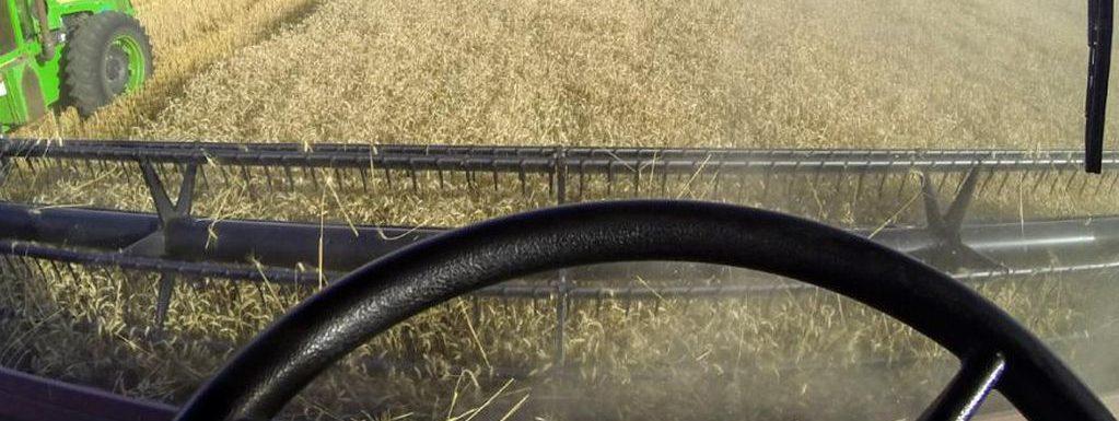 retenciones trigo y maiz